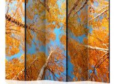 Paraván - Autumnal treetops II [Room Dividers]